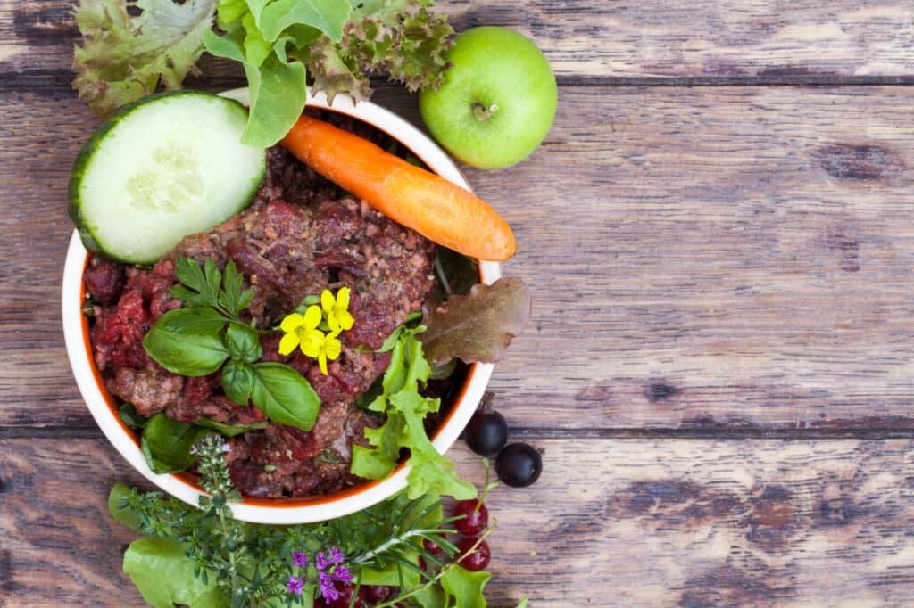 Futternapf, mit Barf- Frischfleisch mit Gemse, Krutern, Salat und Obst als Tabletop mit viel Textfreiraum