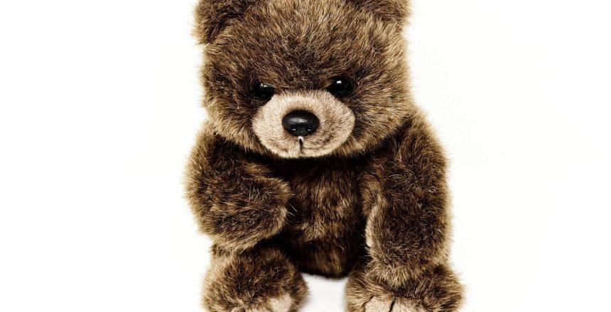 teddy-3583774_1920 (1)
